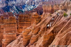Bryce Canyon (2 of 76)