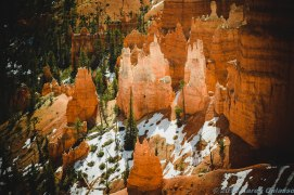 Bryce Canyon (4 of 76)