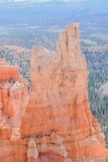 Bryce Canyon (58 of 76)