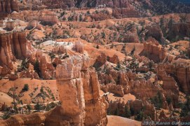 Bryce Canyon (6 of 76)