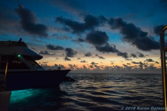 Night Sky of the Bermuda Triangle (23 of 34)