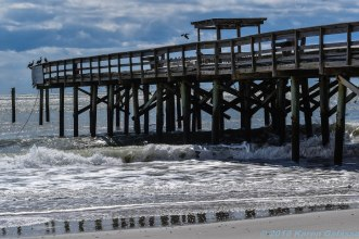 3 118 Myrtle Beach SC beach Piers (6 of 11)