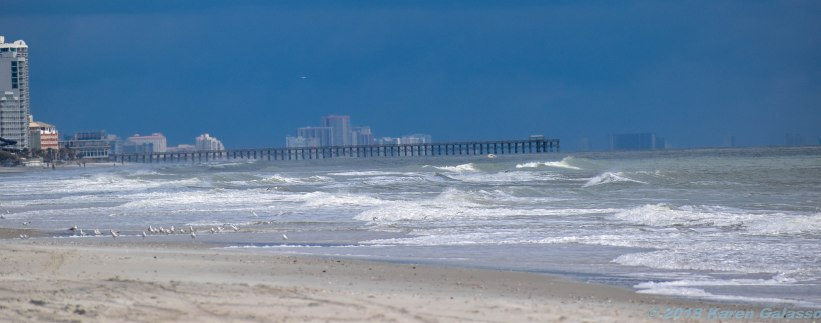 3 118 Myrtle Beach SC beaches (4 of 21)