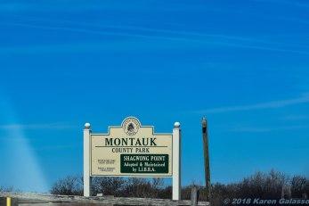 4 9 18 Day 2 Montauk NY Montauk County Park Shagwong Point blog (1 of 3)