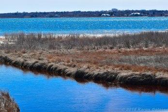 4 9 18 Day 2 Montauk NY Montauk County Park Shagwong Point blog (3 of 3)
