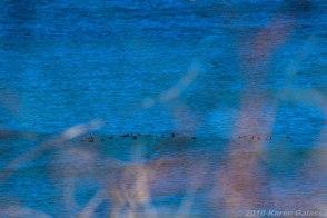 4 9 18 Day 2 Montauk NY Montauk Point State Park & Montauk Point Lighthouse (13 of 42)