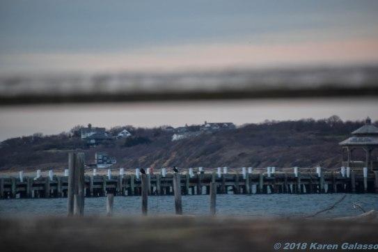 4 9 18 Day 2 Montauk NY Navy Beach nearing sunset (12 of 22)