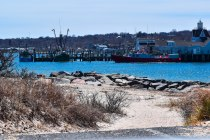 4 9 18 Day 2 Montauk NY unnamed beach area near the Inlet Seafood restaurant (17 of 19)