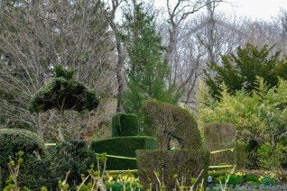 4 30 18 Green Animal Topiary Garden (18 of 29)