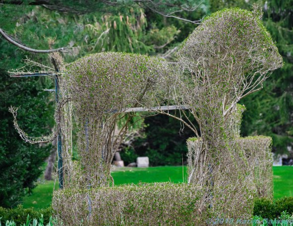 4 30 18 Green Animal Topiary Garden (19 of 29)