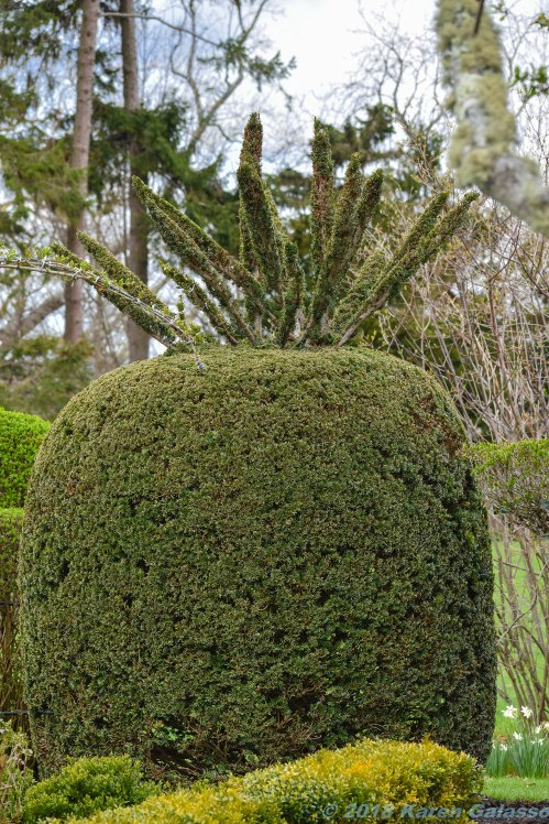 4 30 18 Green Animal Topiary Garden (7 of 29)