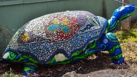 5 13 18 Mackinac Island MI Butterfly House (2 of 21)