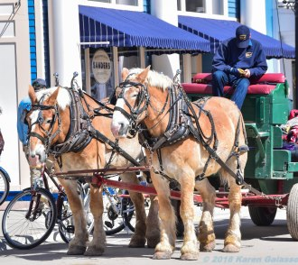 5 13 18 Mackinac Island MI Horses & Buggys (2 of 16)