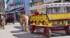 5 13 18 Mackinac Island MI Horses & Buggys (3 of 16)