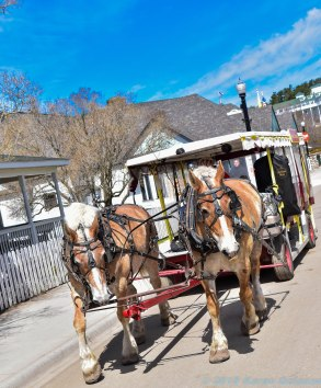 5 13 18 Mackinac Island MI Horses & Buggys (7 of 16)