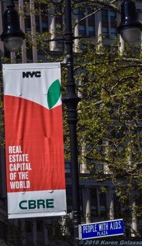 5 3 18 A feel of NY (6 of 11)