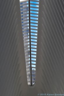 5 3 18 The Oculus (5 of 16)