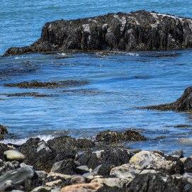 6 20 18 Beach & Rocks around Yarmouth NS Light (8 of 17)