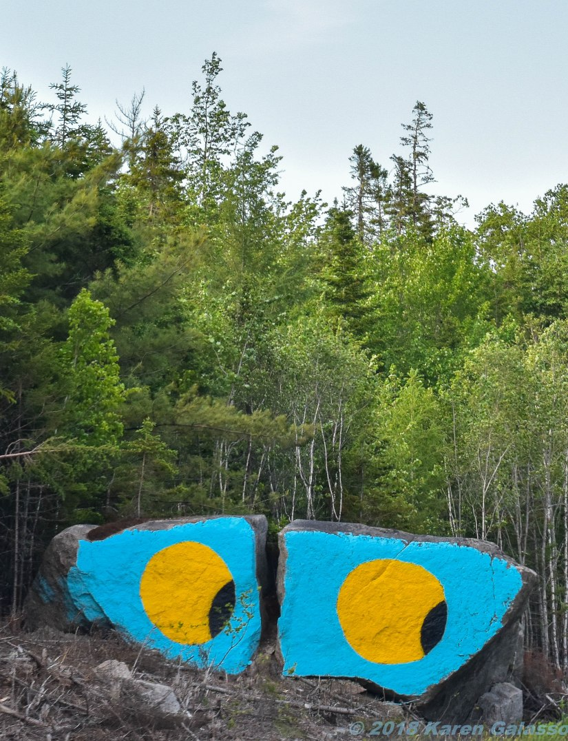 6 20 18 On the road to Halifax NS Who's looking at you while you look at the road- (2 of 2)