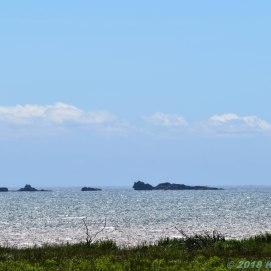 6 24 18 Five Island Provincial Park NS (2 of 16)