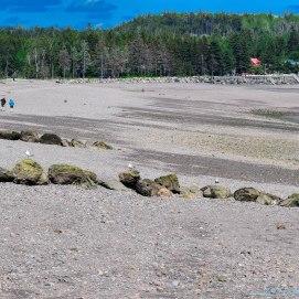 6 24 18 Five Island Provincial Park NS (9 of 16)