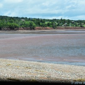 6 24 18 Unknown beach in Economy NS (10 of 15)
