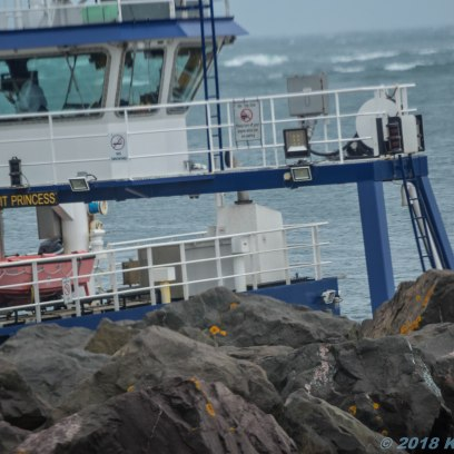 6 28 18 Ferry from Saint John to Digby & ferry to see the lighthouse (17 of 65)