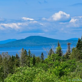 7 1 18 Rangeley ME Overlook (3 of 8)