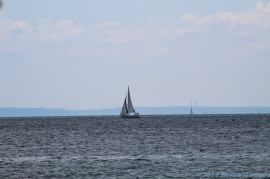 8 15 18 Seaside Park Stratford CT (2 of 13)
