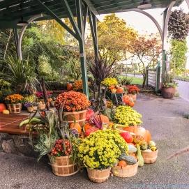10 12 18 Inside Butchart Gardens Vancouver Island BC Canada #2