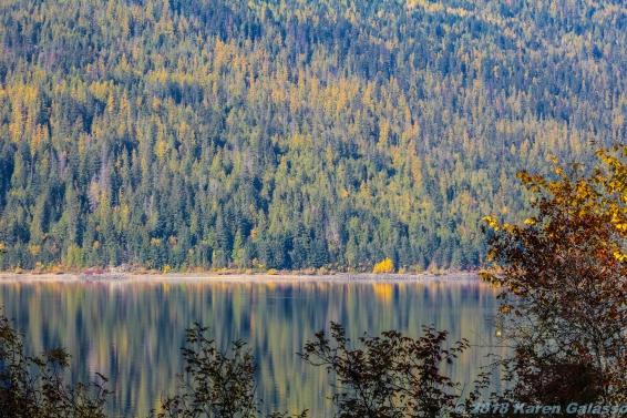 10 15 18 Mara Lake BC Canada (1 of 14)