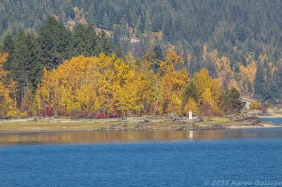 10 15 18 Mara Lake BC Canada (13 of 14)