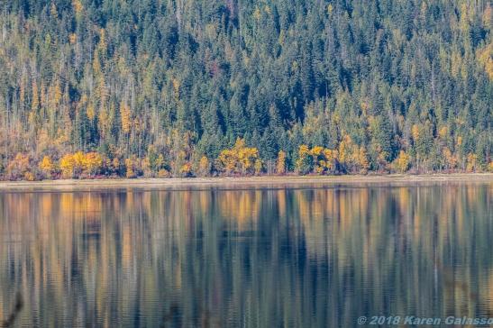 10 15 18 Mara Lake BC Canada (7 of 14)