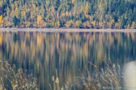 10 15 18 Mara Lake BC Canada (8 of 14)