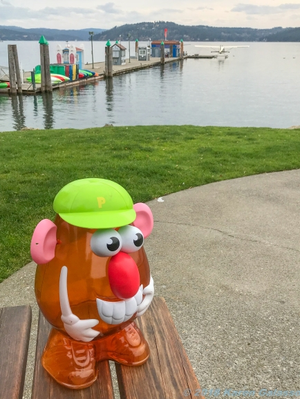10 5 18 Mr PH enjoying the Coeur d'Alene Park in Coeur d'Alene ID (5 of 5)