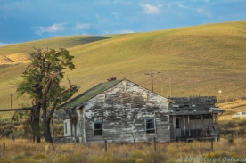 10 6 18 Buildings in the WA state countryside (6 of 10)