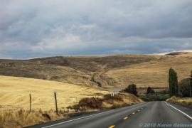10 6 18 Driving around the WA countryside (5 of 12)
