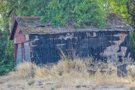 10 6 18 Old buildings & vehicles in a field Moses Lake WA (1 of 7)