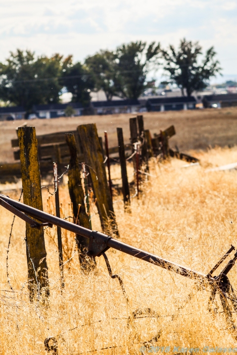 10 6 18 Old buildings & vehicles in a field Moses Lake WA (7 of 7)