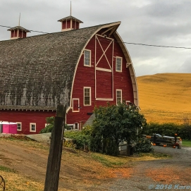 10 6 18 Palouse Farm Colfax WA (6 of 6)