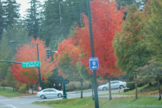 10 7 18 On the road from Lynnwood WA to Seattle WA (12 of 17)