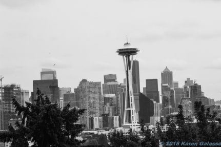 10 7 18 Seattle Space Needle & Skyline Seattle WA (2 of 3)