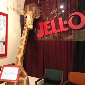 9 17 18 Jello Museum Le Roy NY (10 of 24)