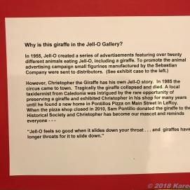 9 17 18 Jello Museum Le Roy NY (11 of 24)