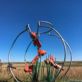 9 26 18 Porter Sculpture Park Montrose SD (7 of 15)