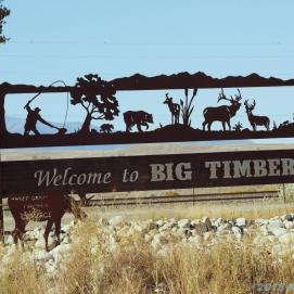 Big Timber #2