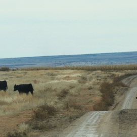 10 30 18 On the road from Colby KS to Quinter KS (12 of 18)