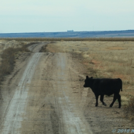 10 30 18 On the road from Colby KS to Quinter KS (13 of 18)