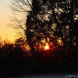11 10 18 AR sunset (2 of 5)