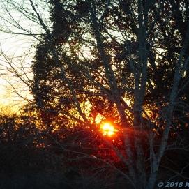 11 10 18 AR sunset (3 of 5)